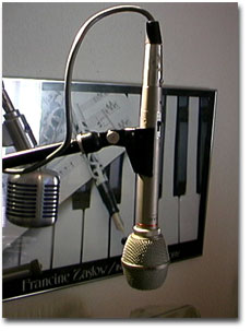 picture of TeacME102 microphone